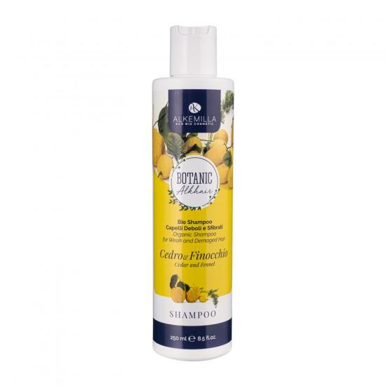 Olio Vegetale Bio Vinaccioli - Alkemilla