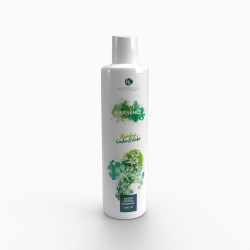 Ginko Biloba and Bamboo Shower Gel  - Alkemilla